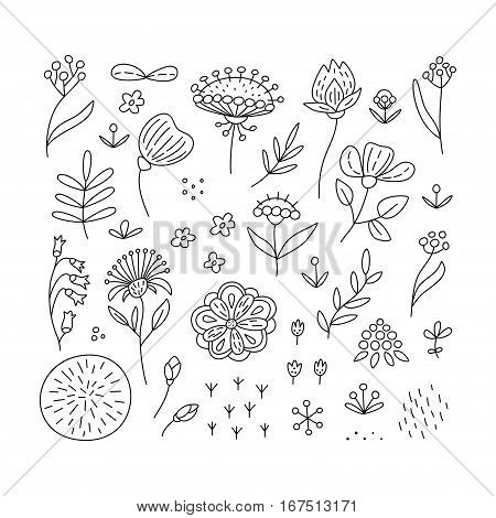 Hand drawn floral elements set. Perfect vector design elements for decorations floral pattern wrapping paper greeting card