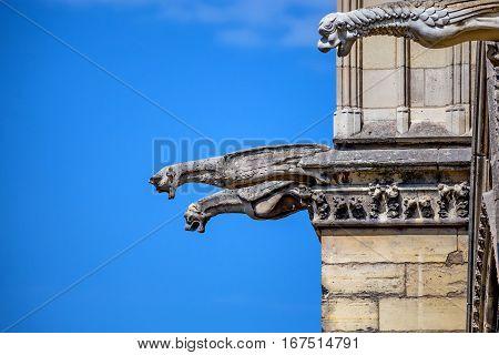Gargoyles as stone demons and chimeras as details of Notre-Dame de Paris