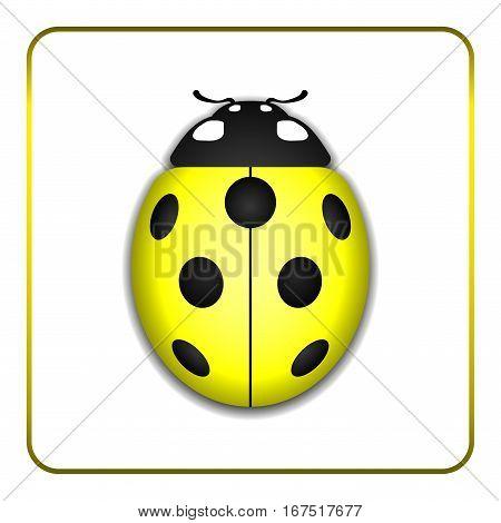 Ladybug Yellow Realistic Cartoon Icon