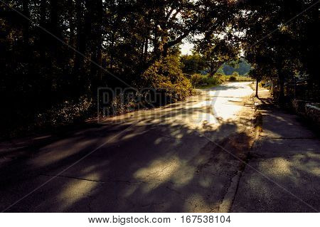 Asphalt road through a dark forest toward sunny forest fringe. Way out concept.