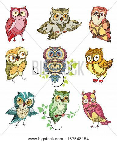 Colorful birds set of cute owls with different emotions on white background isolated vector illustration