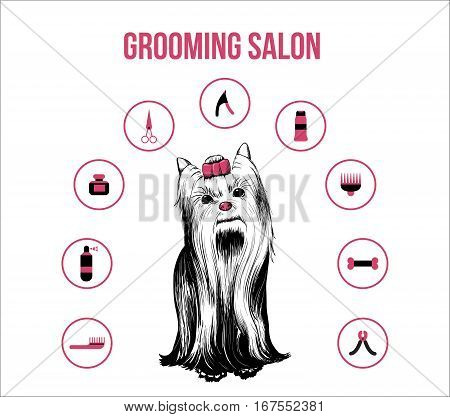 Grooming pets salon concept with hand drawn dog and professional accessories isolated vector illustration