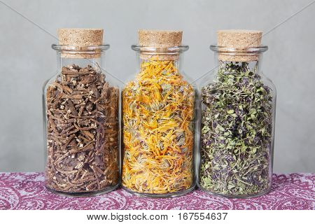 Dandelion roots, calendula and thyme are aligned on a colorful table.
