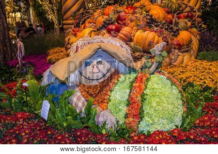 LAS VEGAS - NOV 08 : Fall season in Bellagio Hotel Conservatory & Botanical Gardens on November 08 2016 in Las Vegas. There are five seasonal themes that the Conservatory undergoes each year.