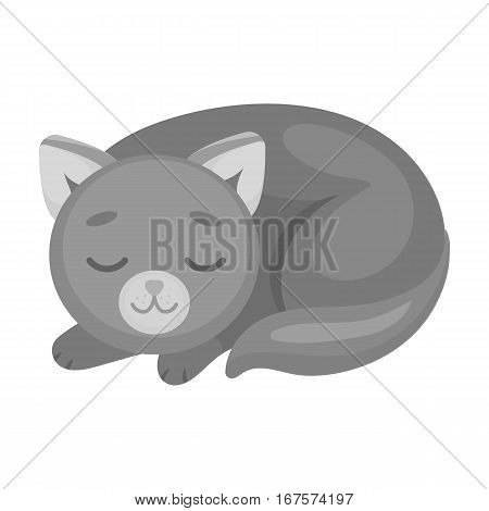 Sleeping cat icon in monochrome design isolated on white background. Sleep and rest symbol stock vector illustration.