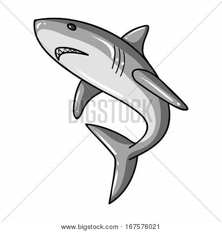 Great white shark icon in monochrome design isolated on white background. Surfing symbol stock vector illustration.