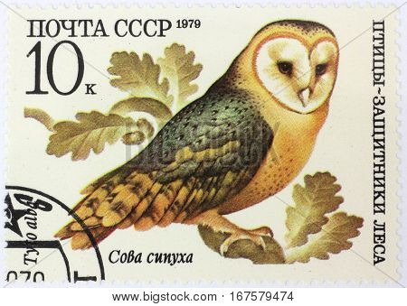 RUSSIA - CIRCA 1979: A stamp printed by Russia, shows Tyto alba, circa 1979
