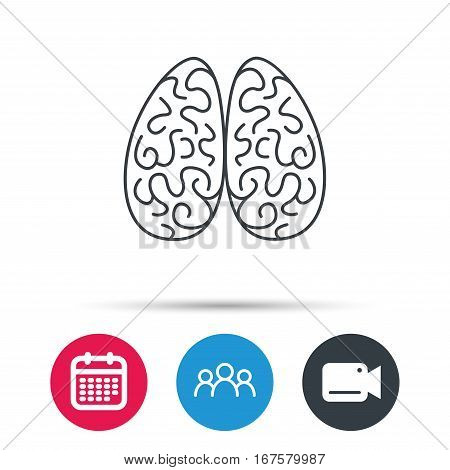 Neurology icon. Human brain sign. Group of people, video cam and calendar icons. Vector