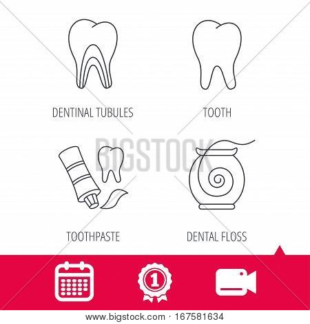 Achievement and video cam signs. Tooth, dentinal tubules and dental floss icons. Toothpaste linear sign. Calendar icon. Vector