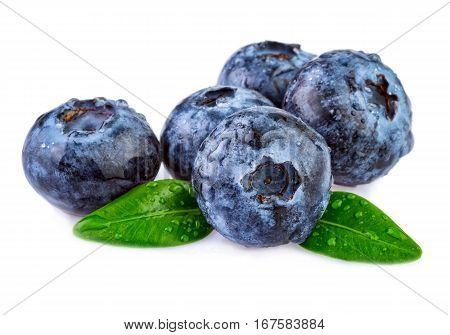 fresh wet blueberries isolated on white background