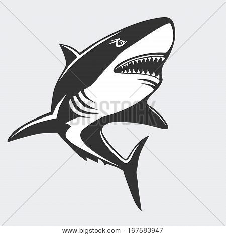 Shark Emblem Isolated On White