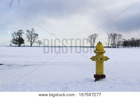Fire Hydrant in a park in the snow