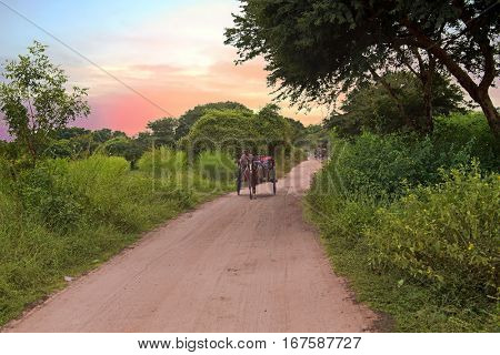 Riding horse cart on dusty road in Bagan, Myanmar at sunset