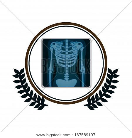 circular border with olive branch and screen with x-ray of bones vector illustration