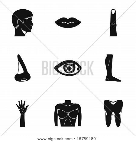 Body icons set. Simple illustration of 9 body vector icons for web
