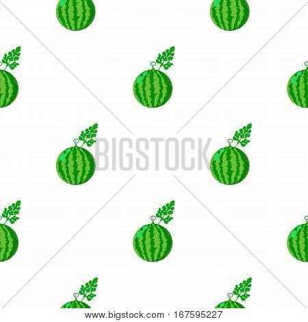 Watermelon icon cartoon. Single plant icon from the big farm, garden, agriculture cartoon stock vector - stock vector