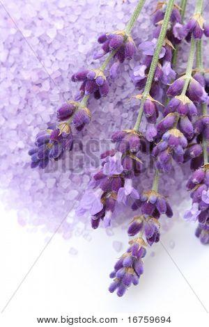 lavender bath salt and some fresh lavender isolated on white