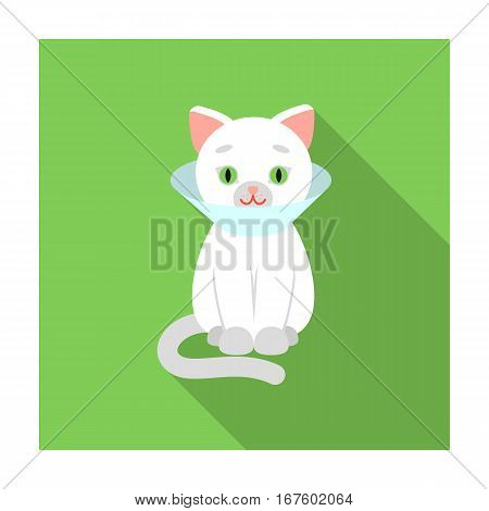 Cat sick icon of vector illustration for web and mobile design - stock vector