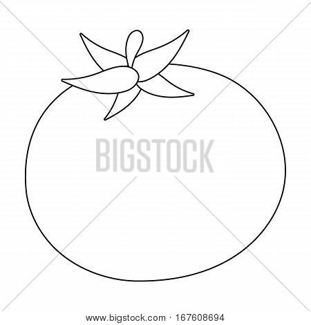 Tomato icon outline. Singe vegetables icon from the eco food outline. - stock vector