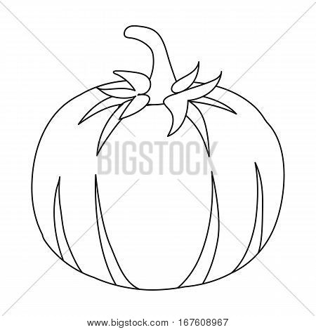 Pumpkin icon outline. Singe vegetables icon from the eco food outline. - stock vector