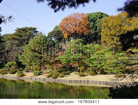 Rikugien Park With The Lake In Tokyo, Japan