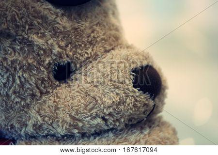 Big teddy bear closeup. Lovely teddy bear blur background