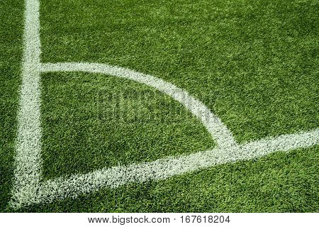 Artificial Grass With White Line
