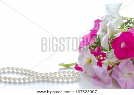 Bouquet of pink petunias on a white background and a pearl necklace. Space for text.