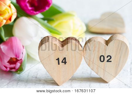 Valentine's Day dates on hearts and spring tulips on white background