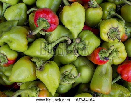 Green and red pepper sweet pepper or paprika image bunch of green and red paprika wallpapers background photo of green pepper pod green paprika pod pile closeup picture of green pepper pod