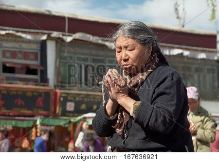 Lhasa, Tibet, China - June 2011: Elderly Tibetan pilgrim lady prays at the Jokhang temple in Lhasa on June 2011 in Lhasa, Tibet, China.