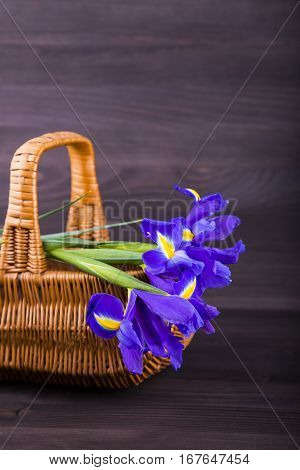 Bouquet Of Irises In Wicker Basket On Dark Wooden Background