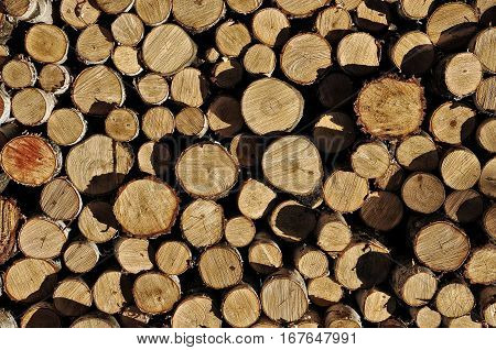 Chopped Firewood. Natural Background Pattern