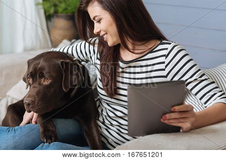 Cute soulmate. Beautiful smiling nice woman holding her tablet in one hand and hugging her cute dog with another while sitting on a sofa in a living room