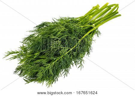Dry seeds and green sprigs of dill on a white background. Studio Photo