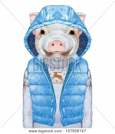 Animals as a human. Portrait of  Piggy in down vest and sweater. Hand-drawn illustration, digitally colored.