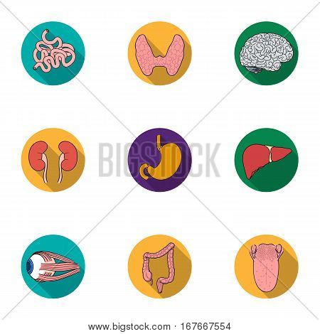 Human organs set icons in flat design. Big collection of human organs vector symbol stock illustration