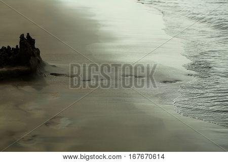 Adult Human Footprints Or Foot Steps Lead To Sandcastle