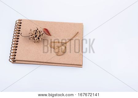 Heart shaped leaf pine cone and a notebook on a white background