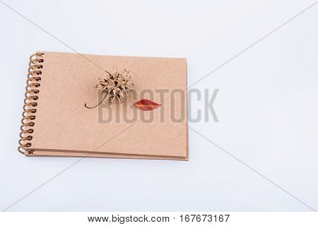 Heart Shaped Leaf Pine Cone And A Pencil On A Notebook