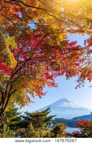 Mount Fuji with lake