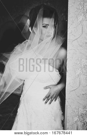 Bride Seems Fabulous Looking Through A Veil