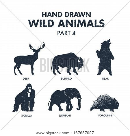 Hand drawn textured wild animals icons set with deer buffalo bear gorilla elephant and porcupine vector illustrations.