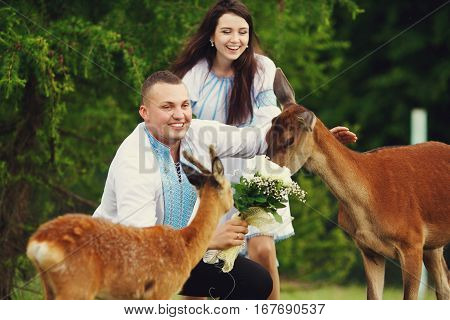 Yound Deer Smells A Wedding Bouquet Held By Groom In Embroidered Shirt