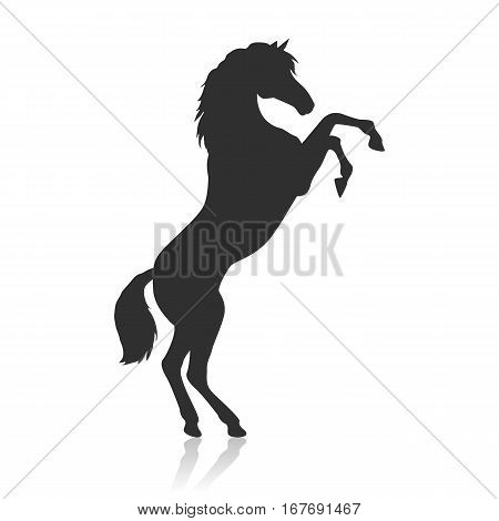 Black horse with hind legs vector. Flat design. Domestic animal. Country inhabitants concept. For farming, animal husbandry, horse sport illustrating. Agricultural species. Isolated on white