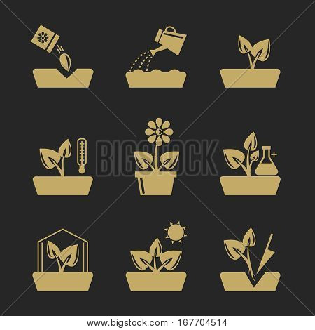 Planting and seeding ground signs. Plants and seeds, greenhouse and flowers vector icons. Growth of flower and concept gardening illustration