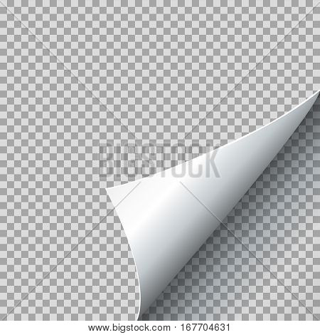 Paper curl vector illustration. Curled page corner with shadow on transparent background. Sheet with bent edge corner