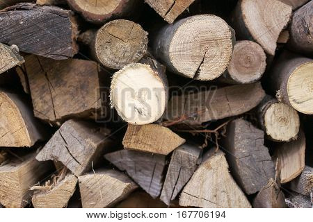Background of dry chopped firewood logs in a pile.