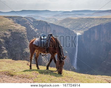 The 192m high Maletsunyane Falls and large canyon in the mountainous highlands near Semonkong, Lesotho, Africa.
