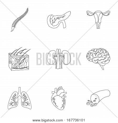 Organs set icons in outline style. Big collection of organs vector symbol stock